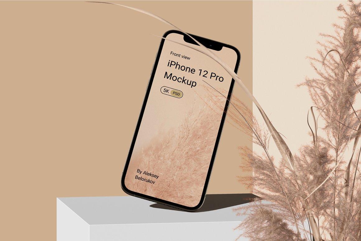 [单独购买] 15个超清前视图网页APP界面设计苹果设备屏幕演示样机 Device Pack Mockups – Front View插图5