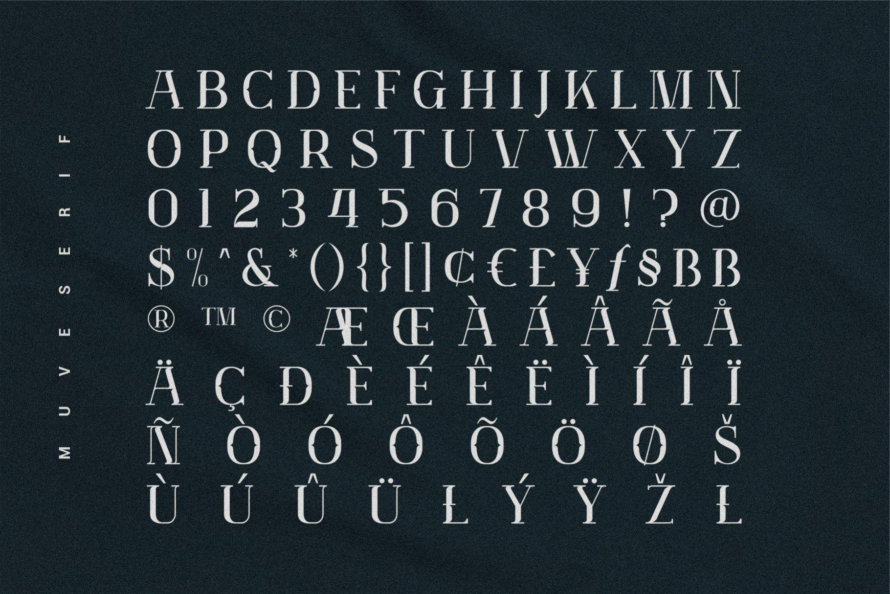 优雅轻奢现代时尚Logo杂志海报标题衬线英文字体素材 Muve Serif Font插图6