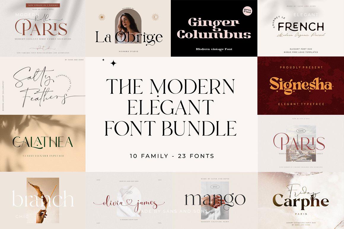 [单独购买] 12套时尚优雅奢华杂志海报标题品牌徽标Logo设计英文字体素材套装 Modern Elegant Font Bundle插图