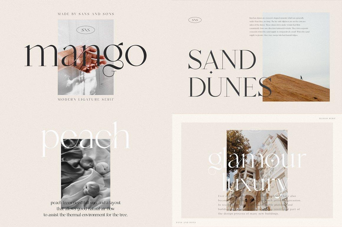 [单独购买] 12套时尚优雅奢华杂志海报标题品牌徽标Logo设计英文字体素材套装 Modern Elegant Font Bundle插图1