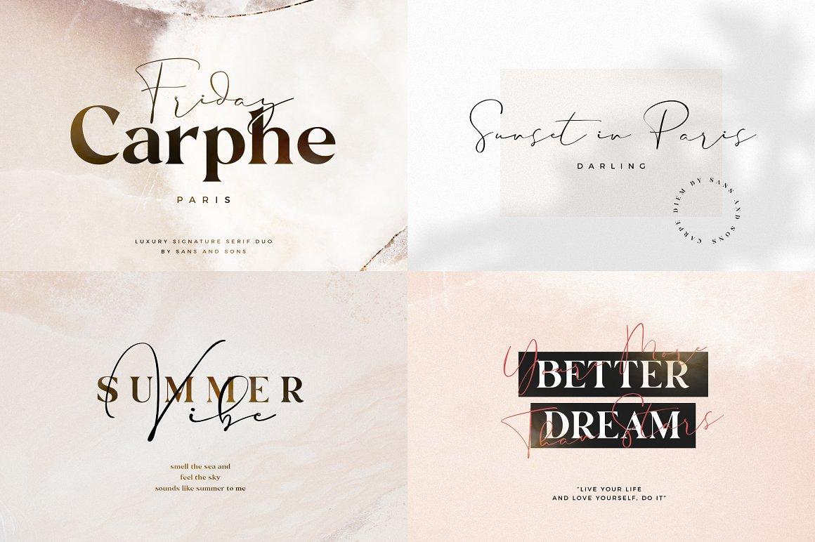 [单独购买] 12套时尚优雅奢华杂志海报标题品牌徽标Logo设计英文字体素材套装 Modern Elegant Font Bundle插图4