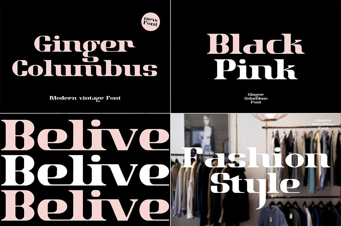 [单独购买] 12套时尚优雅奢华杂志海报标题品牌徽标Logo设计英文字体素材套装 Modern Elegant Font Bundle插图9