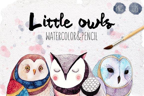 500多款可爱卡通动物花卉手绘水彩画设计素材 500+ENTIRE SHOP BUNDLE Watercolors插图24
