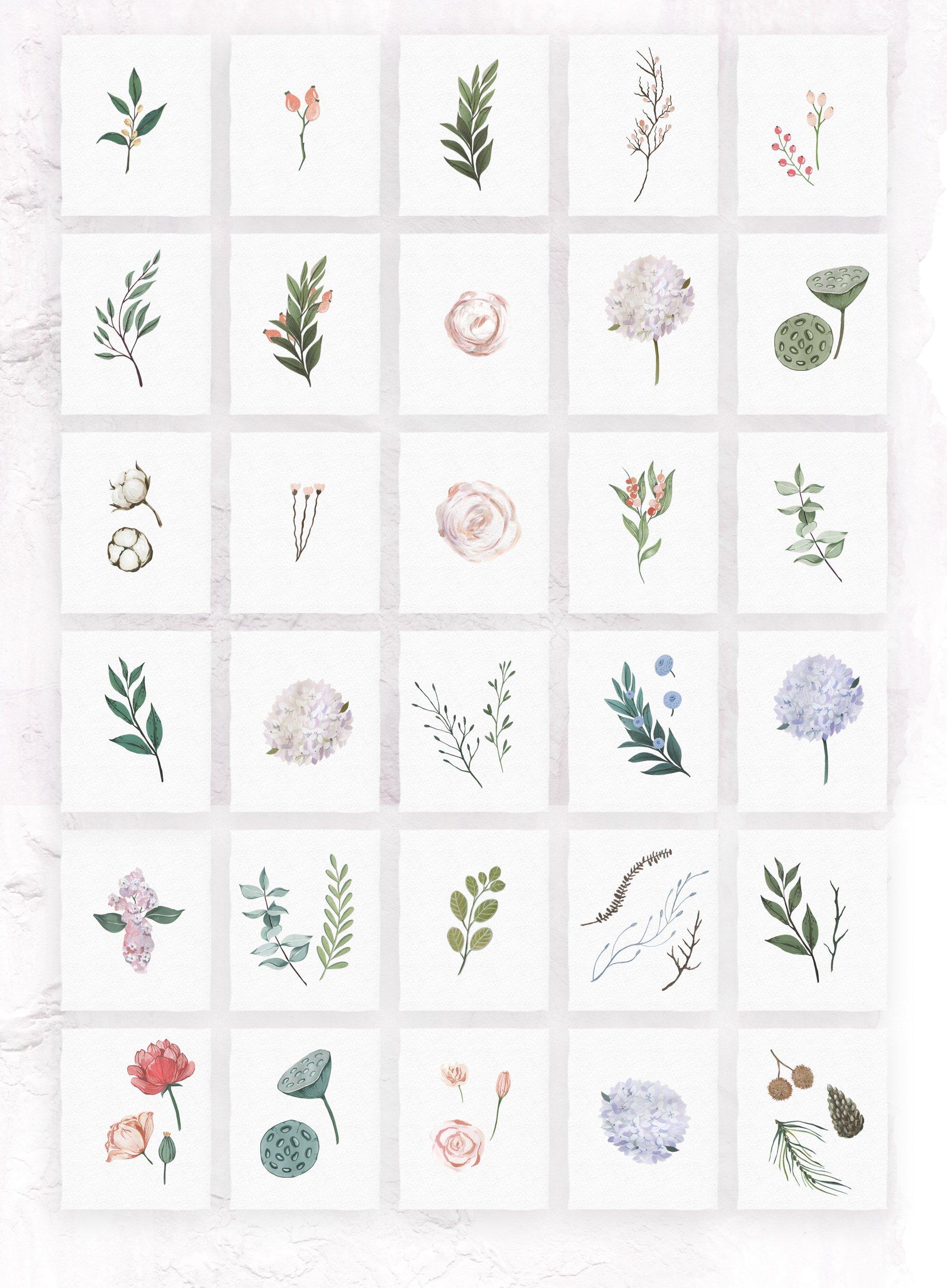 哑光油漆质感花卉树叶手绘水彩画PNG透明图片素材 Gouache Dusty Flowers插图6