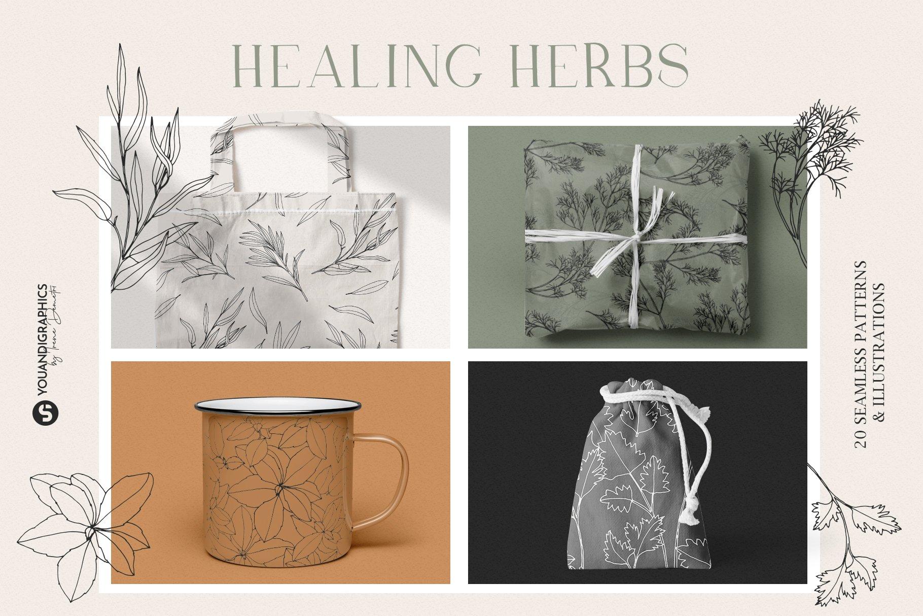 优雅中药草药花草手绘无缝隙矢量图案设计素材 Herbs Patterns & Illustrations插图