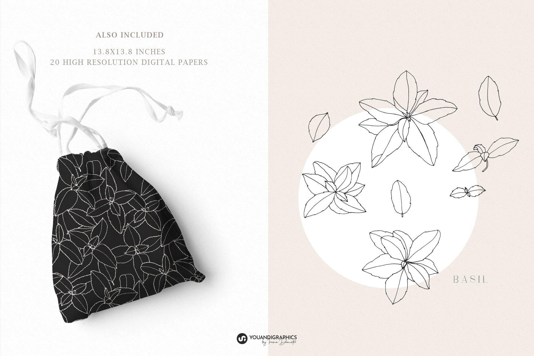 优雅中药草药花草手绘无缝隙矢量图案设计素材 Herbs Patterns & Illustrations插图4