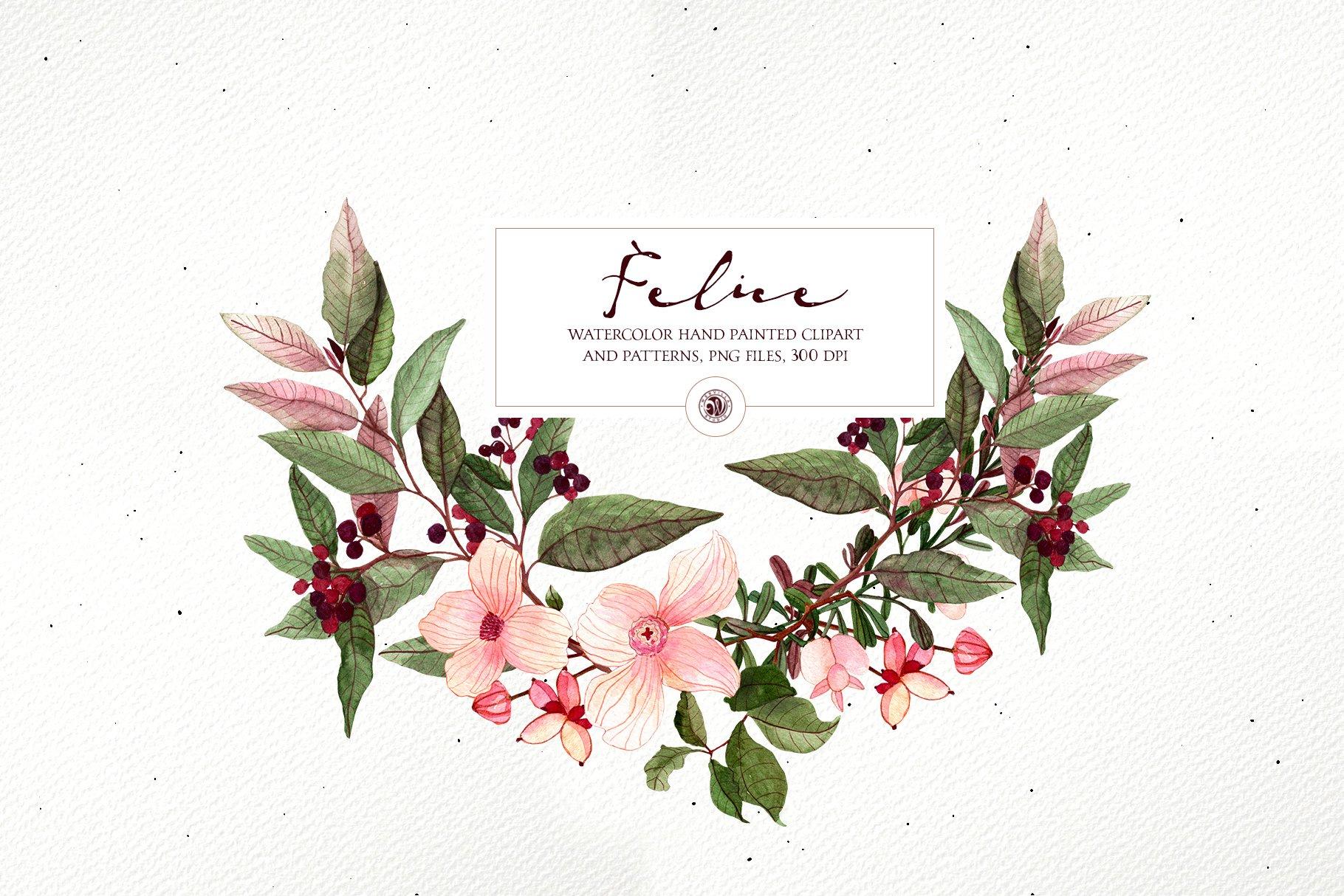 16款高清花卉花圈手绘水彩画无缝隙图案PNG透明图片素材 Felice – Watercolor Floral Set插图1