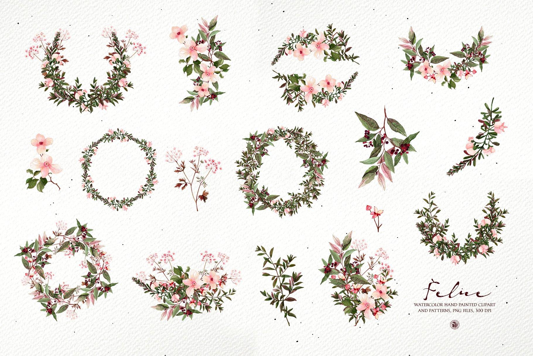 16款高清花卉花圈手绘水彩画无缝隙图案PNG透明图片素材 Felice – Watercolor Floral Set插图8