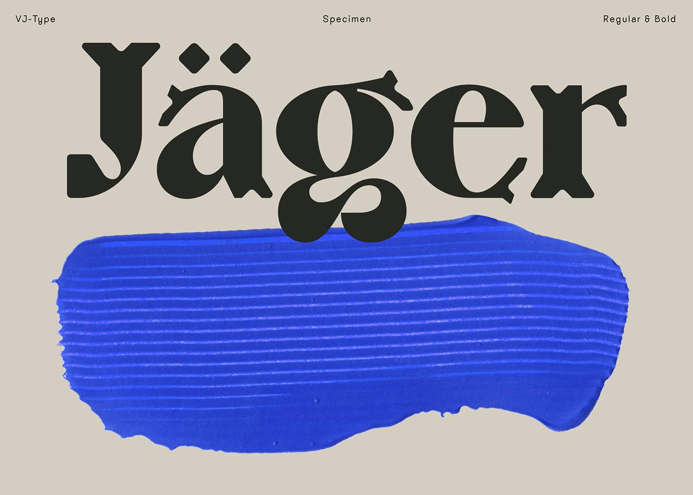 [单独购买] 10套潮流逆反差酸性杂志标题Logo设计VJ Type家族英文字体合集 VJ Type – Typeface Font Collection插图3