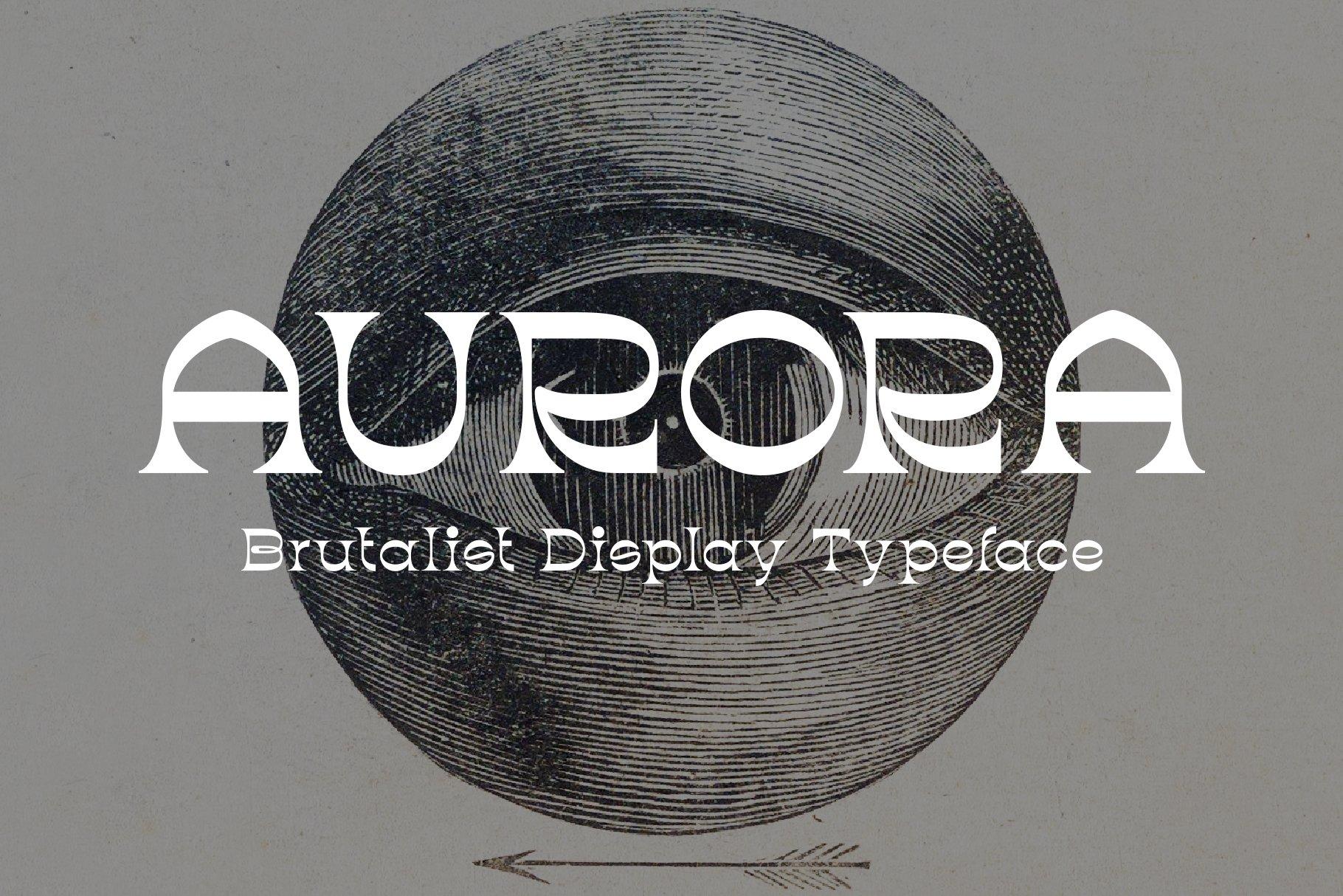 潮流复古酸性逆反差标题徽标Logo设计衬线英文字体素材 Aurora Font插图