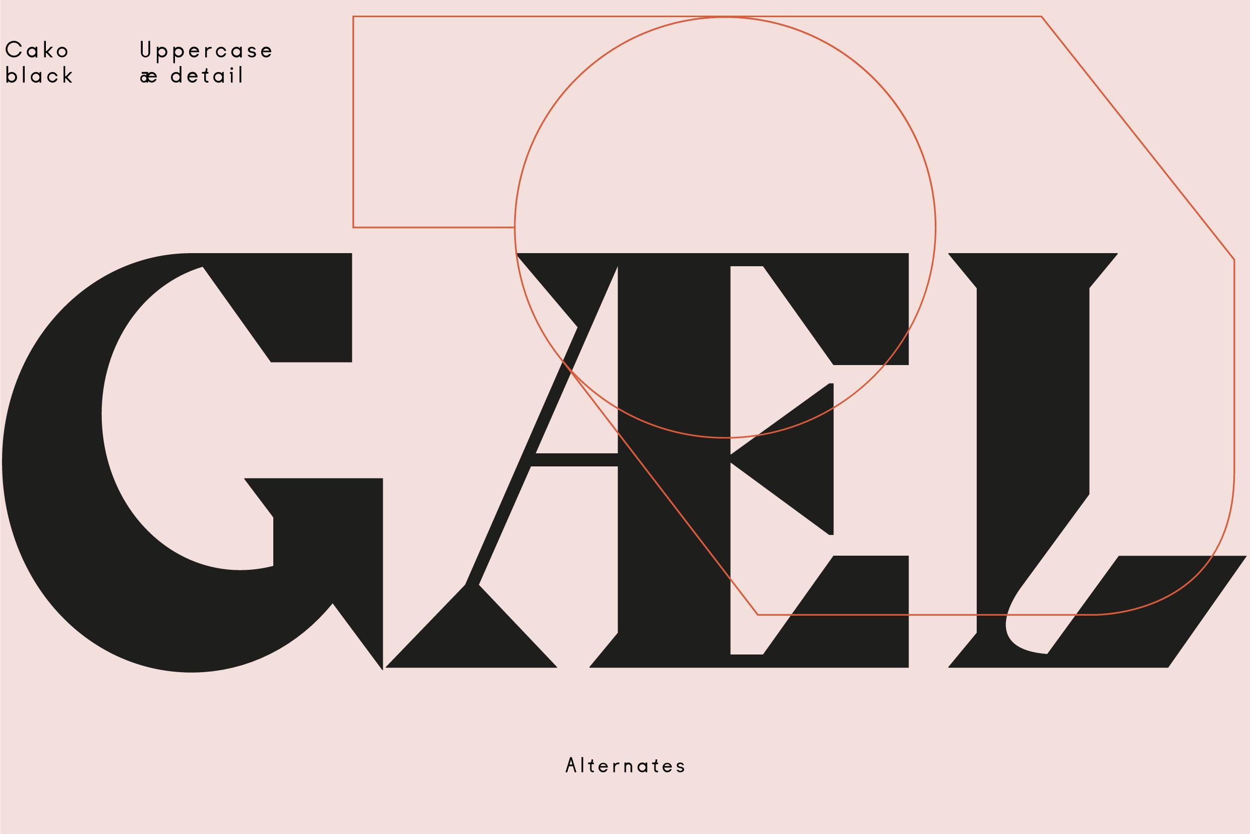 [单独购买] 10套潮流逆反差酸性杂志标题Logo设计VJ Type家族英文字体合集 VJ Type – Typeface Font Collection插图5
