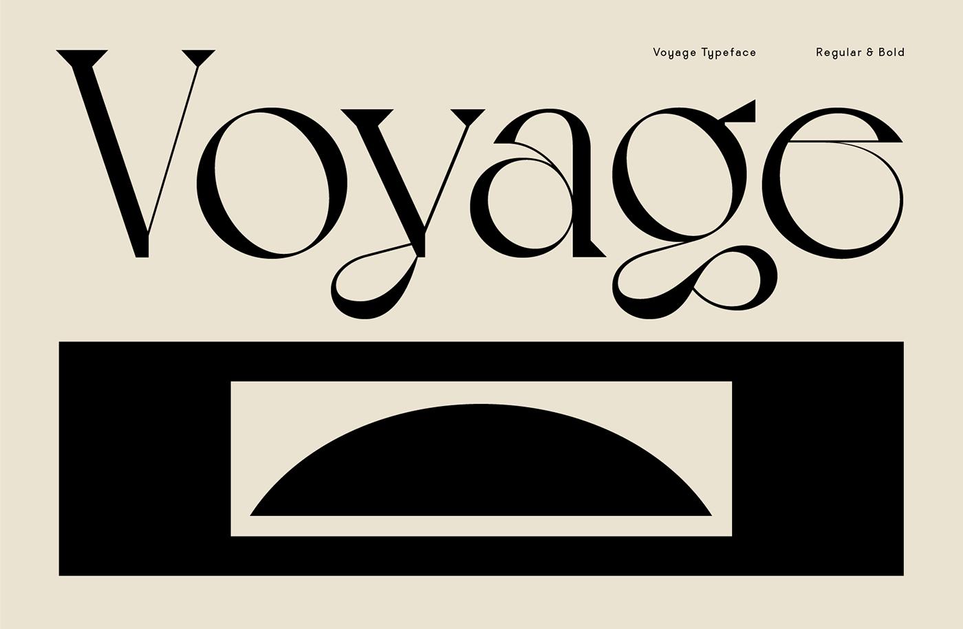 [单独购买] 10套潮流逆反差酸性杂志标题Logo设计VJ Type家族英文字体合集 VJ Type – Typeface Font Collection插图
