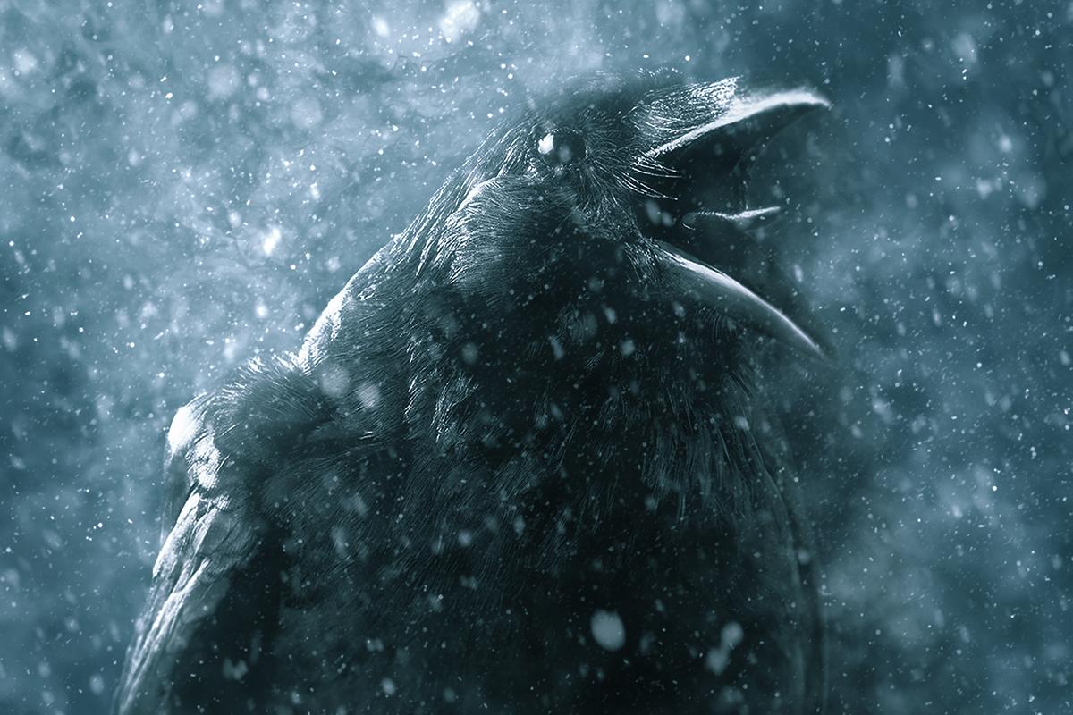 梦幻暴风雪效果照片处理特效PS动作模板 Ice Storm Action for Photoshop CS6+插图7