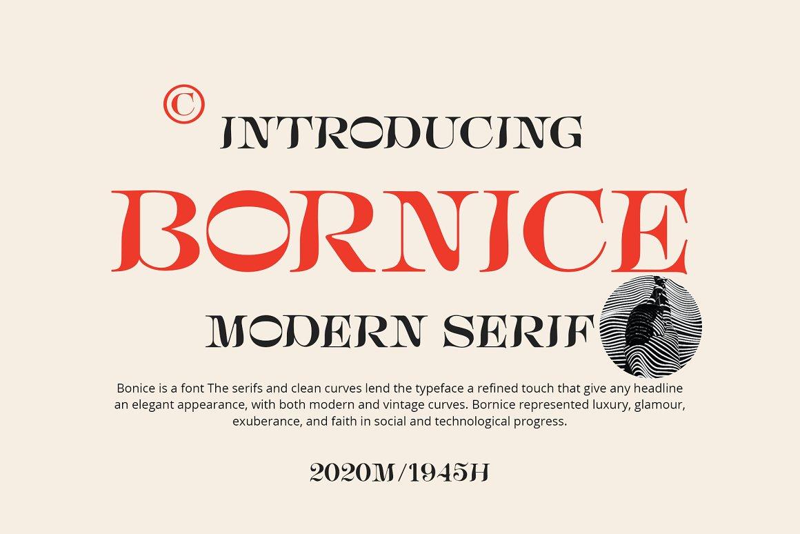 [单独购买] 现代优雅复古酸性杂志海报标题徽标Logo衬线英文字体素材 Bornice Modern Serif插图