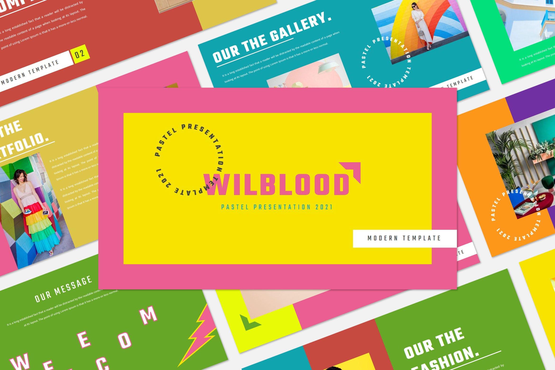 时尚炫彩服装策划提案简报作品集设计模版 WILBLOOD – Keynote Template插图