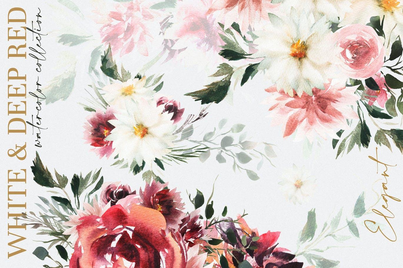 39款玫瑰花花卉手绘水彩画图片设计素材 Watercolor White & Deep Red插图