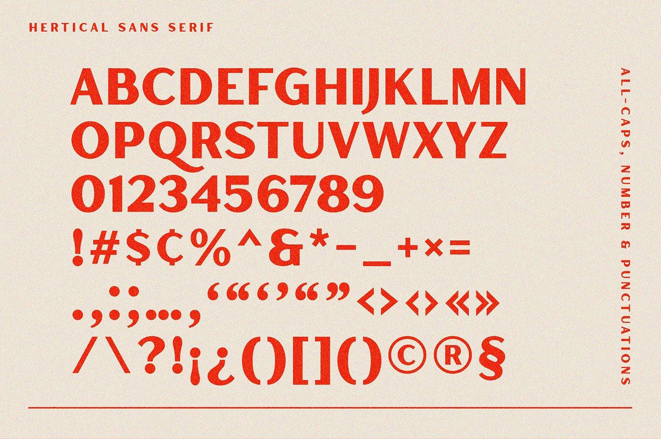 时尚复古标题徽标Logo衬线英文字体下载 Hertical Font插图9