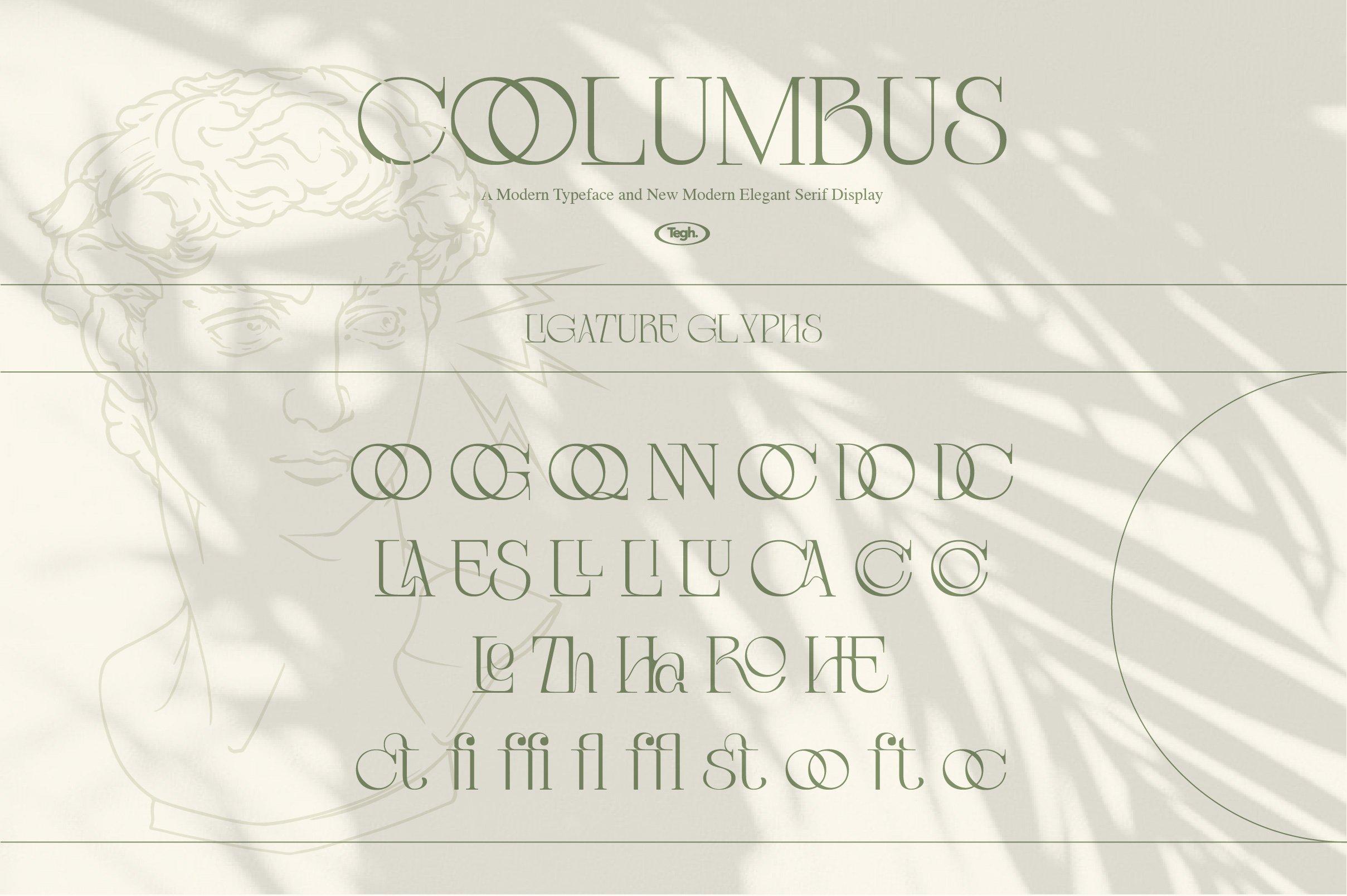 优雅复古杂志海报标题徽标Logo设计衬线英文字体素材 Coolumbus Modern Serif Font插图9