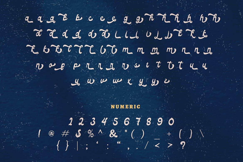 复古有趣海报标题徽标Logo手写英文字体素材 Lico – Vintage Retro Display Font插图9