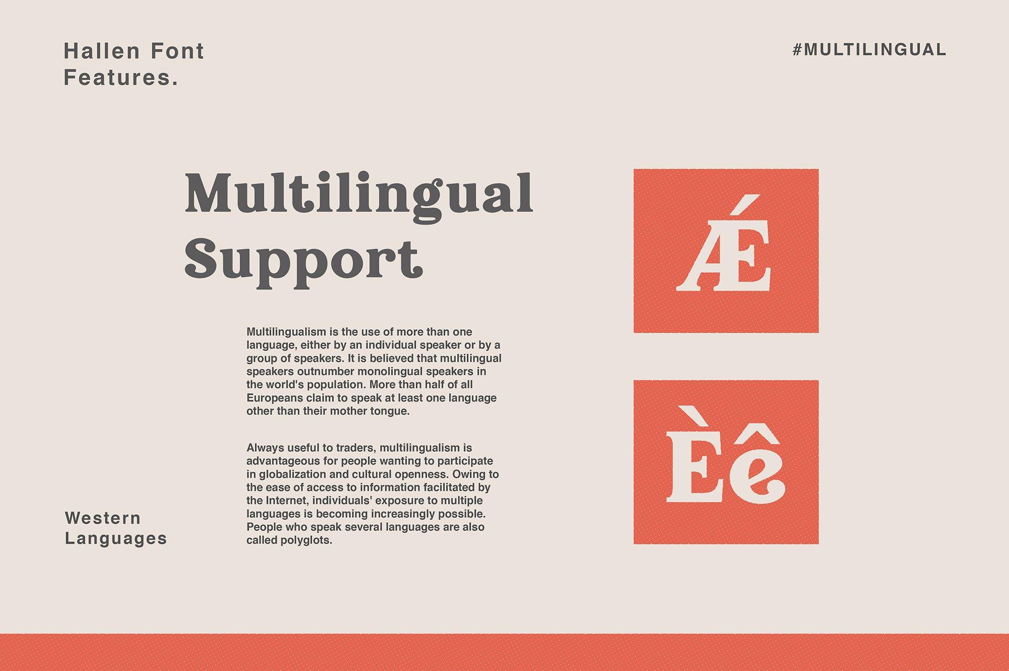 现代经典杂志海报标题Logo设计衬线英文字体下载 Hallen Font插图10