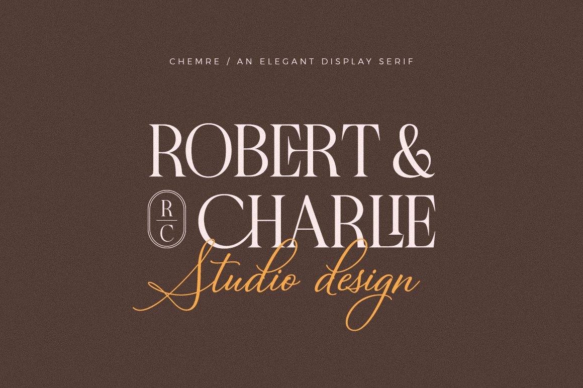 现代优雅品牌徽标Logo海报标题设计衬线英文字体素材 Chemre Font插图10
