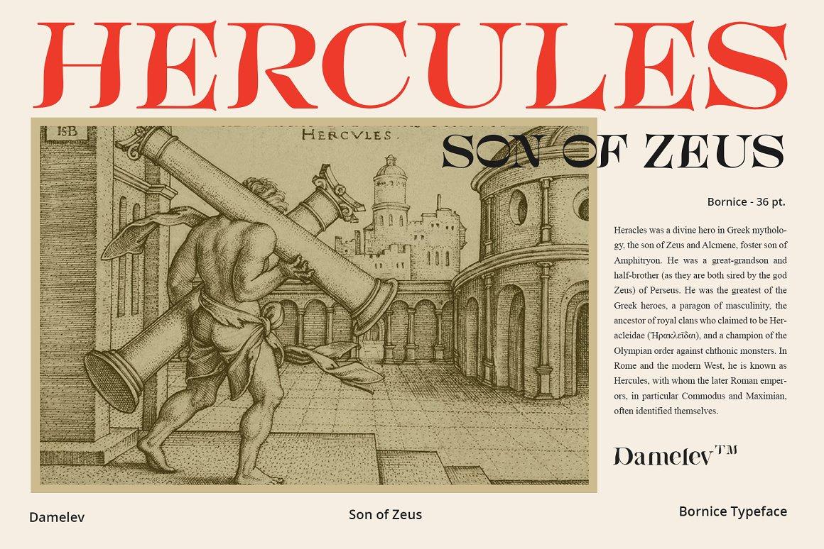 [单独购买] 现代优雅复古酸性杂志海报标题徽标Logo衬线英文字体素材 Bornice Modern Serif插图9