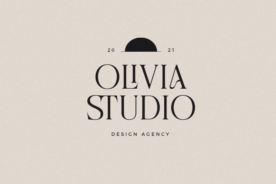 现代优雅品牌徽标Logo海报标题设计衬线英文字体素材 Chemre Font插图11