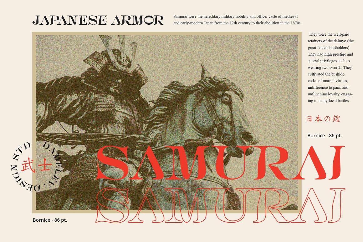 [单独购买] 现代优雅复古酸性杂志海报标题徽标Logo衬线英文字体素材 Bornice Modern Serif插图10