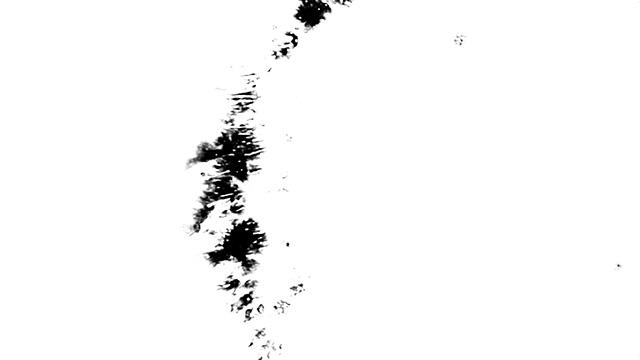 [单独购买] 160款4K高清水墨泼墨晕染滴落背景转场视频设计素材 BusyBoxx – V11 Ink Spreads插图146