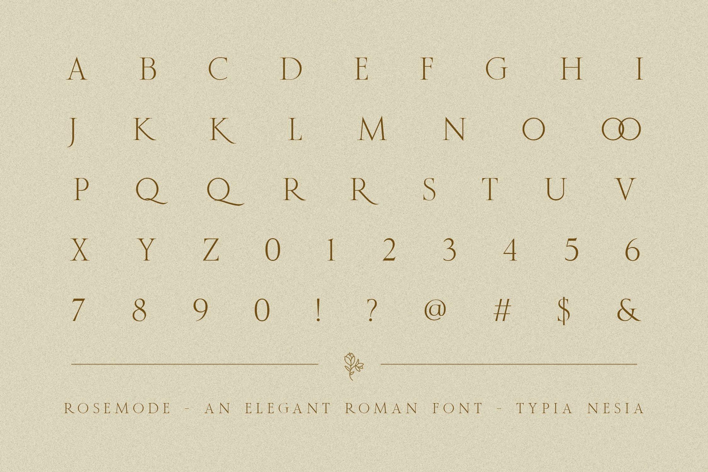 优雅经典杂志海报标题Logo设计衬线英文字体素材 Rosemode Font插图13
