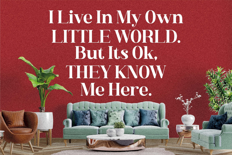 现代奢华品牌徽标Logo海报标题衬线英文字体下载 Hustle Actlife Font插图15