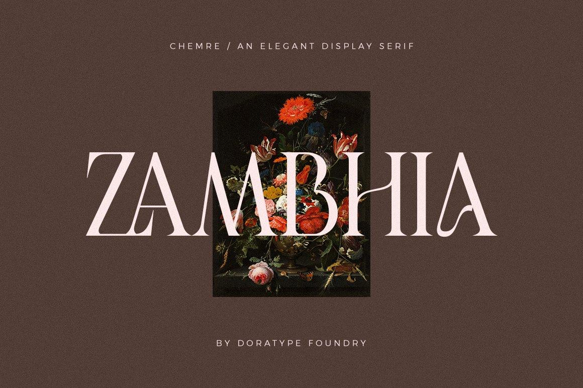 现代优雅品牌徽标Logo海报标题设计衬线英文字体素材 Chemre Font插图16