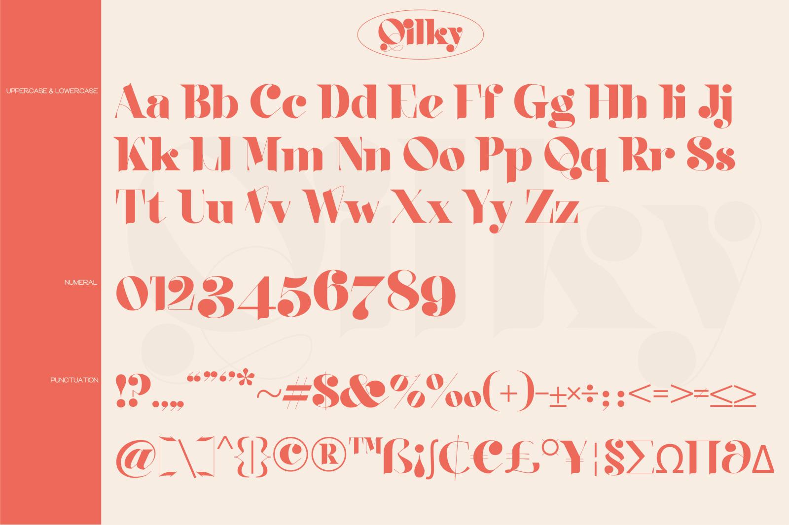 时尚复古品牌徽标Logo海报标题设计衬线英文字体素材 Qilky Font插图14