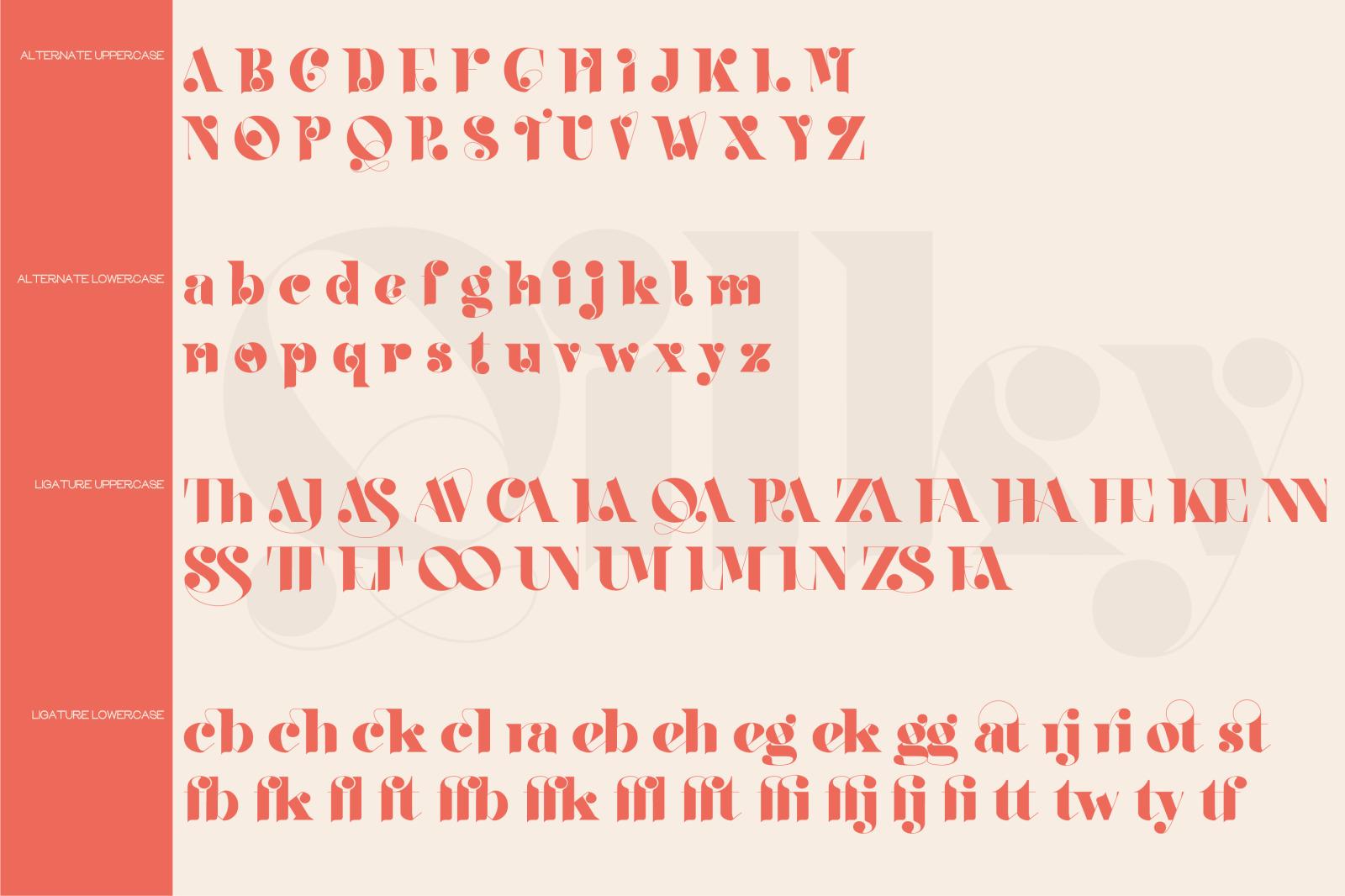 时尚复古品牌徽标Logo海报标题设计衬线英文字体素材 Qilky Font插图15