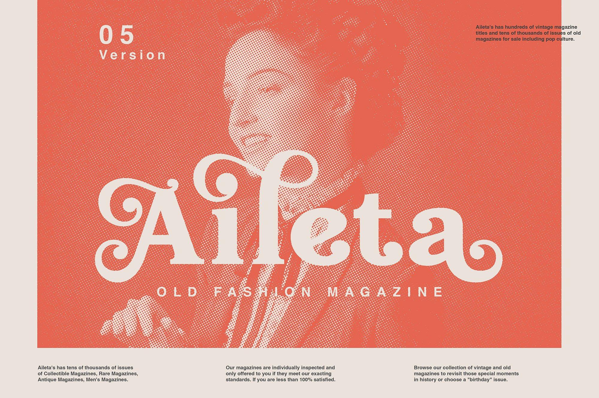 现代经典杂志海报标题Logo设计衬线英文字体下载 Hallen Font插图1