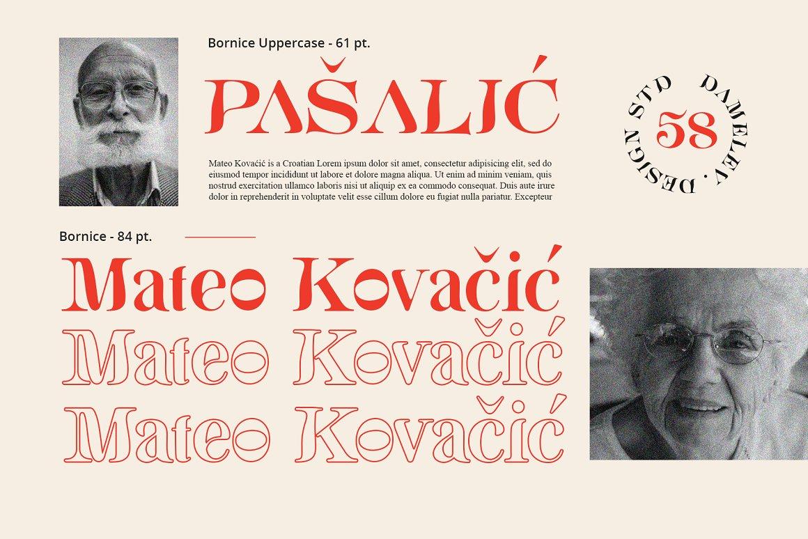 [单独购买] 现代优雅复古酸性杂志海报标题徽标Logo衬线英文字体素材 Bornice Modern Serif插图2