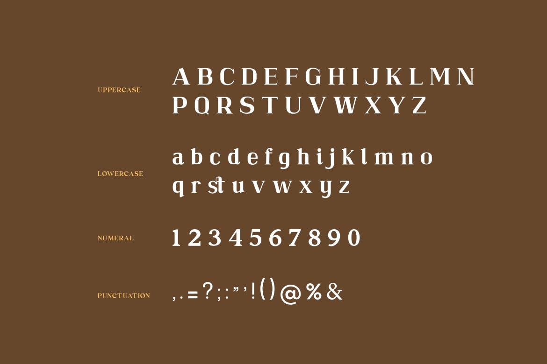 现代复古杂志海报标题Logo设计衬线英文字体下载 Cremiline Serif Font插图2