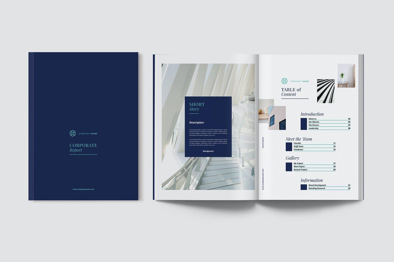 现代优雅企业年度报告书设计INDD画册模板 Corporate Report插图
