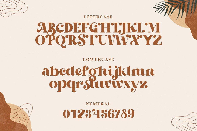 复古优雅标题徽标Logo设计衬线英文字体素材 Beachfly Font插图2