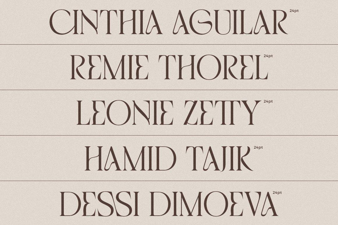 现代优雅品牌徽标Logo海报标题设计衬线英文字体素材 Chemre Font插图2