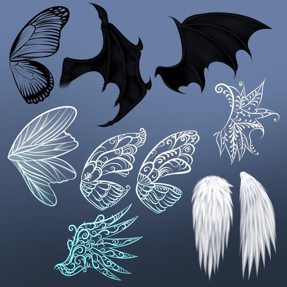 20个飞行动物翅膀艺术绘画Procreate笔刷素材 Wing Stamps for Procreate插图2