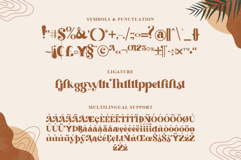 复古优雅标题徽标Logo设计衬线英文字体素材 Beachfly Font插图4