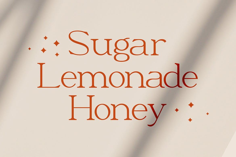 优雅轻奢现代时尚Logo杂志海报标题衬线英文字体素材 Moeda – Luxury Serif Font插图4