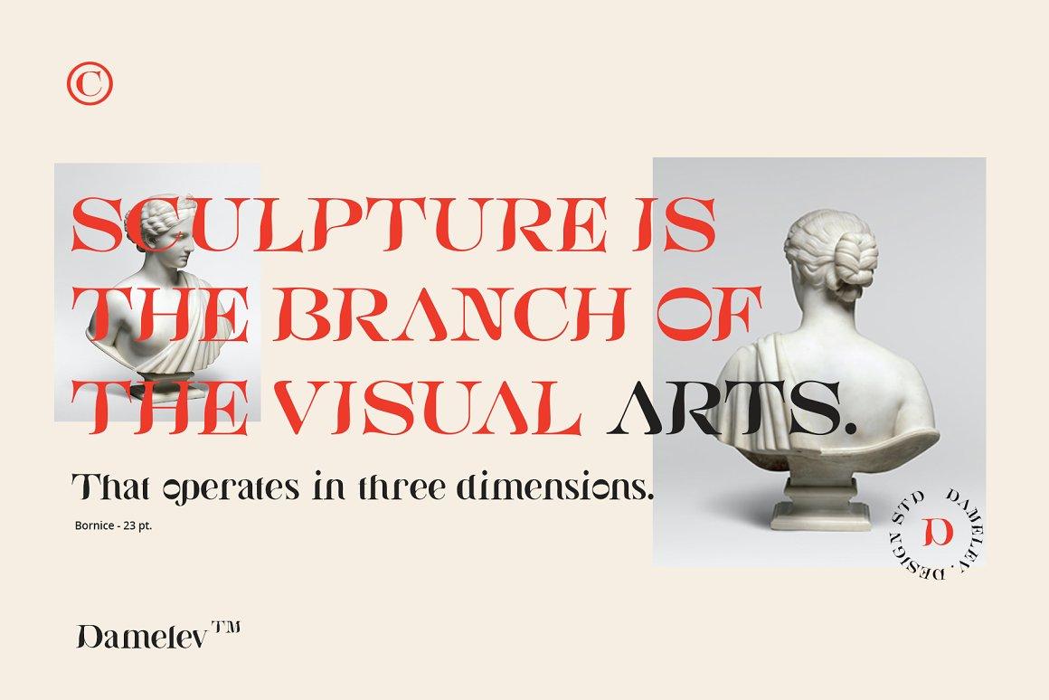 [单独购买] 现代优雅复古酸性杂志海报标题徽标Logo衬线英文字体素材 Bornice Modern Serif插图6