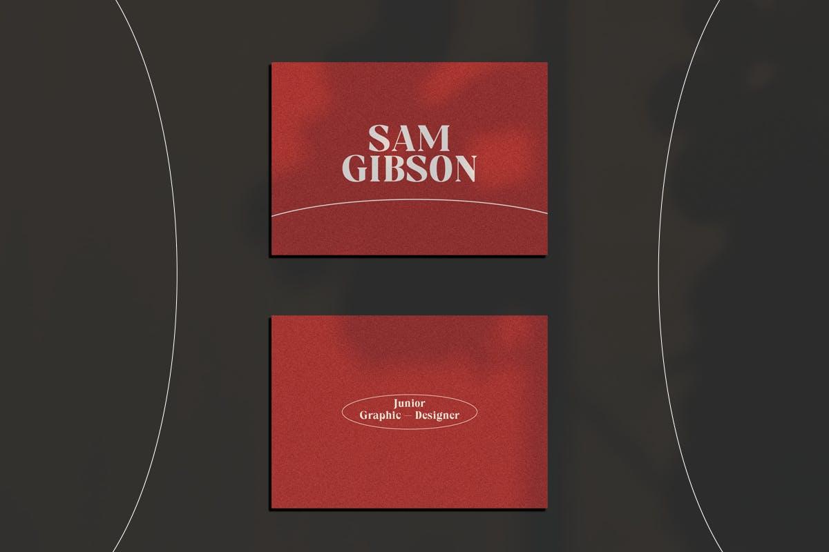现代优雅海报标题徽标Logo设计衬线英文字体素材 Cadfille – Serif Display Font插图6