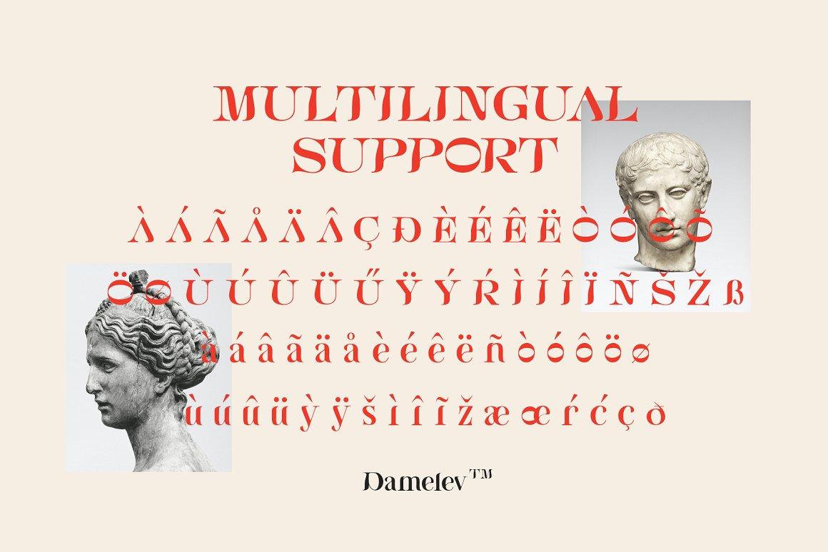 [单独购买] 现代优雅复古酸性杂志海报标题徽标Logo衬线英文字体素材 Bornice Modern Serif插图7