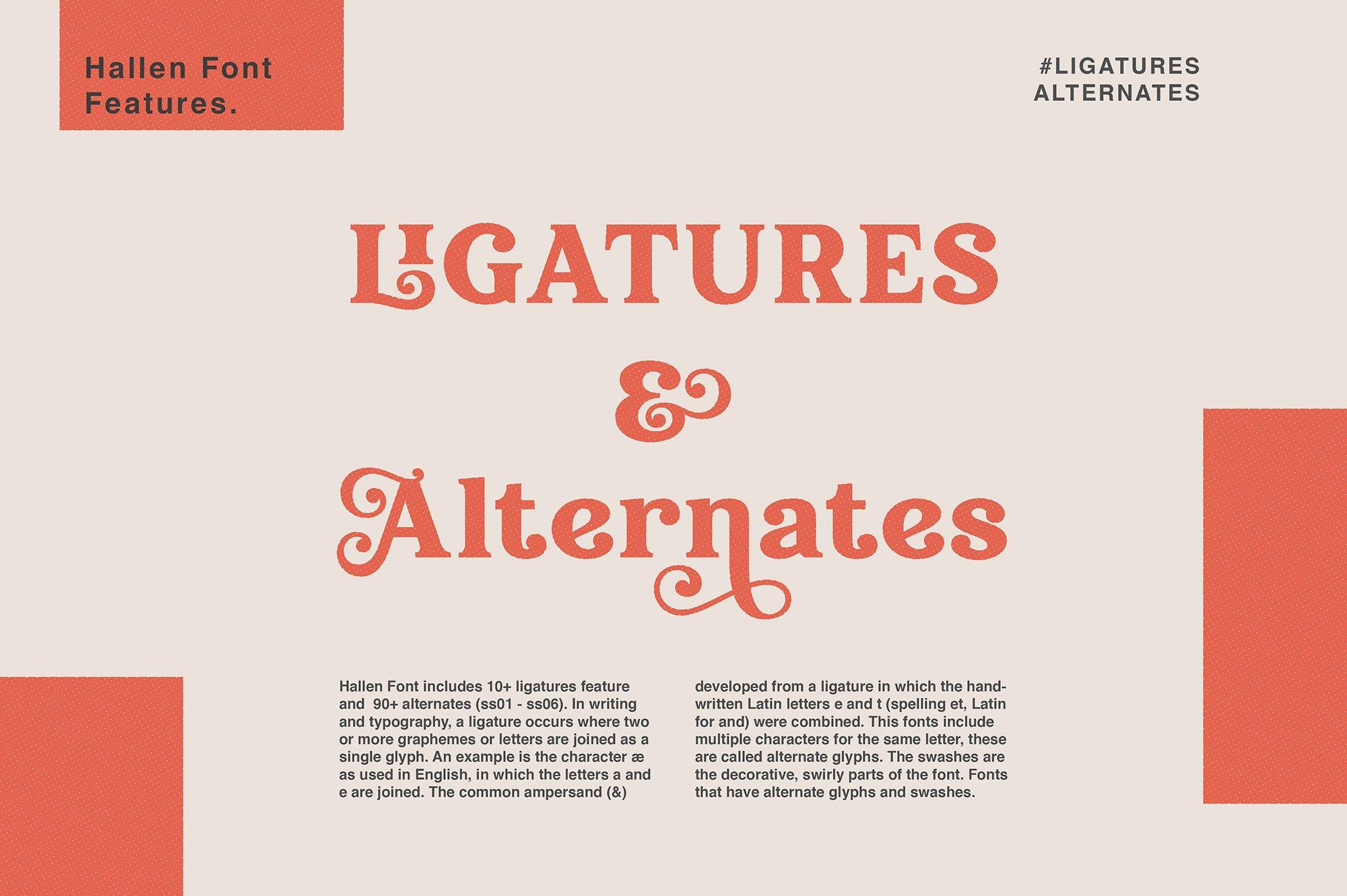 现代经典杂志海报标题Logo设计衬线英文字体下载 Hallen Font插图7