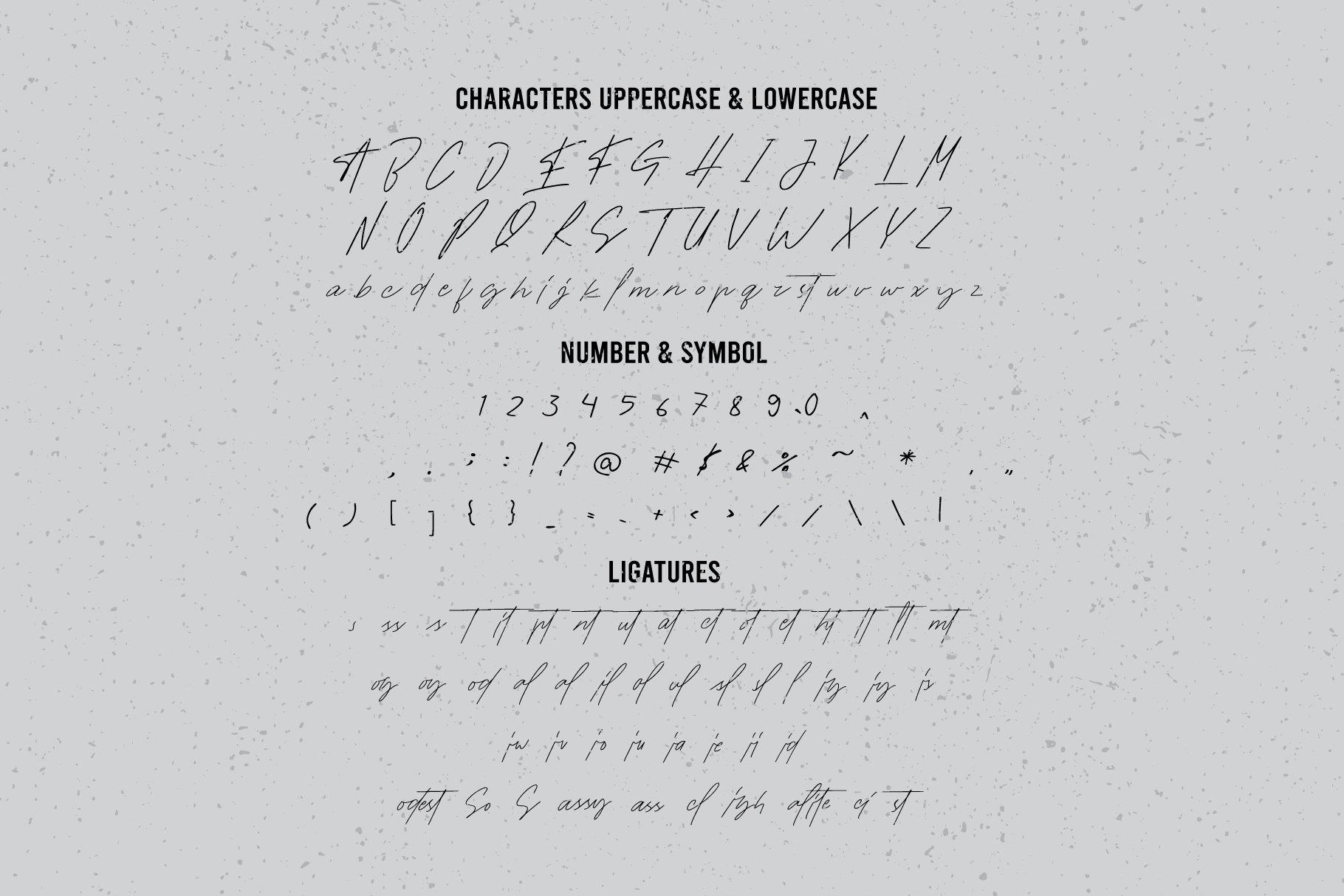现代时尚海报标题品牌徽标Logo设计手写英文字体素材 Socialite Font插图7