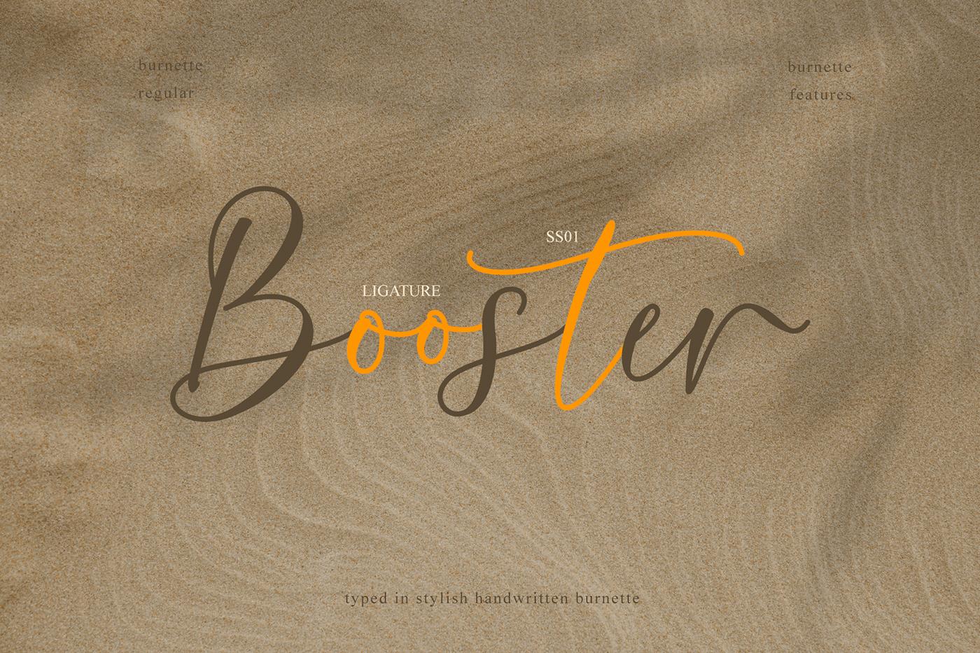 时尚优雅标题徽标Logo手写英文字体素材 Burnette Font插图7