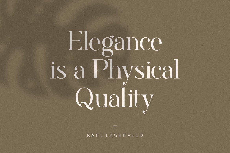 现代优雅标题品牌徽标Logo设计衬线英文字体下载 Rostemary Elegant Serif插图7